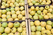 Apples in crates to the wholesale market Corbas France