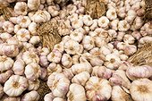 Garlic wholesale market Corbas France
