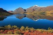 Tundra around Alligator Lake in autumn Yukon Canada  ; Lakeland South
