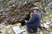 Specialist kittiwakes on cliff - France  ; Jean Yves Monnat