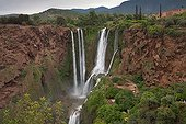 Ouzoud waterfall on El Abid river - Middle Atlas  Morocco