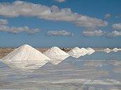 Salt marshes of Sabkhat Tazra - Khenifiss NP Morocco
