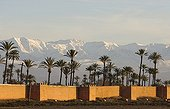 The ramparts of Marrakesh against the High Atlas mountains