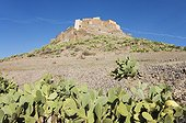 Kasbah Tizourgane and Prickly Pear - Anti-Atlas Morocco