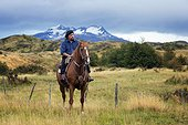 Gaucho on his horse  - Patagonia Chile
