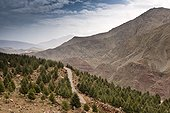 Mountain road Oukaimeden - Toubkal High Atlas Morocco