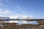 Landscape polar tundra - Spitsbergen Svalbard King Bay
