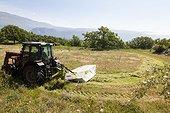 Mowing hay - Préalpes d'Azur RNP France