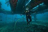 umbilical diver moving in zero  - Aquarius Reef Base Florida ; neutral buoyancy