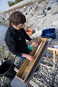 Measuring an eel on the Rhine - Alsace France  ; Biometrics on the fish fauna of the Rhine
