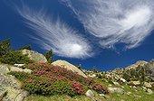 Cirrus clouds - Reserve Neouvielle Pyrénées France