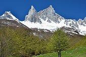 Needles Ansabère - Aspe Valley Pyrenees France