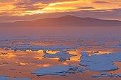 Ice at sunset - Chukotka Russia ; Chukchi Sea