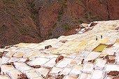 Salt mines of Maras - Sacred Valley of the Incas Peru
