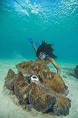 Giant Clam and Snorkeler