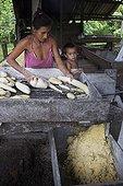 Manufacture of Cassava flour - Amapa Brazil Amazon  ; Machine called Caititu or rapper to Cassava<br>People Ribeirinhos