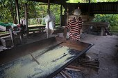 Manufacture of Cassava flour - Amapa Brazil Amazon  ; Use a scraper called rodo to aerate flour Cassava during drying and cooking<br>People Ribeirinhos