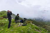 Birding trail - Asturias Spain