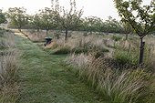 Orchard meadow at Jardins fruitiers de Laquenexy