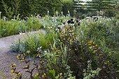 Loosestrifes 'firecraker' at Jardins fruitiers de Laquenexy ; Le jardin des sens