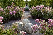 Rose-trees at Jardins fruitiers de Laquenexy ; Le jardin des petits fruits