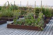 Squarefoot garden at Jardins fruitiers de Laquenexy ; Le potager d'un curieux