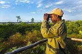 Straw-coloured fruit bat observatory - Kasanka NP  Zambia
