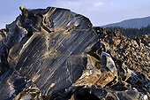 Obsidian - Newberry National Volcanic Monument  Oregon USA ; Casting very recent, about 1300 years - that obsidian was used to make the stone tools, found thousands of kilometers in North America