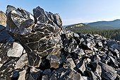 Obsidian - Newberry National Volcanic Monument  USA ; Casting very recent, about 1300 years - that obsidian was used to make the stone tools, found thousands of kilometers in North America