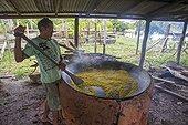 Manufacture of Cassava flour - Amazonas Brazil