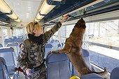 Entrainement à la recherche d'explosif dans un train SNCF ; Equipe cynophile des transports aériens de Nice. Gendarmerie GIC06