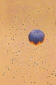 Ballooning over the Namib Desert - Namibia