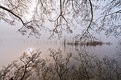 Winter lights on the lake de Barterand - Bugey France