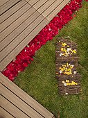 Wooden-floor alleys decorated using rose petals for a feast