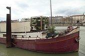Dog on a barge docked - Lyon France