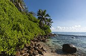 Landscape of the island of Mahé - Seychelles