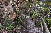 Aménagement touristique sur l'île de Frégate - Seychelles