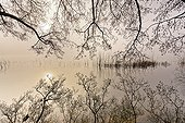 Barterand lake at dawn in winter - France Bugey Highlight Asferico 2015