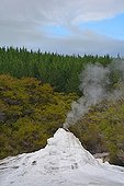 Geyser activity - Wai-O-Tapu New Zealand