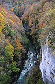 """The Cheran river in autumn - Alpes France ; Cheran is a course labeled """"Wild River"""" from 2014 by the Fund for the Conservation of Wild Rivers water."""