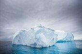 Iceberg drifting - Antarctic Peninsula