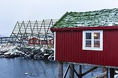 House on stilts and blow fish - Svolvaer Lofoten