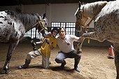 Enfant et moniteur posant avec chevaux en équilibre ; Emmanuel 13 ans atteint de paralysie cérébrale vient au centre toutes les semaines depuis 7 ans. Il travaille aujourd'hui les trois piliers de l'équitation : Assise Equilibre et Saut.Equithérapie en partenariat avec l'Association AAAEPAD et Ariel Pagani équithérapeute<br>Asociacion Argentina de Actividades Ecuestre para Discapacitados<br>