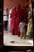 Ceremony - Karni Mata Temple of India