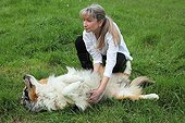 Magnetic therapy on a dog