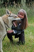 Magnetic therapy on a Czechoslovakian wolfdog