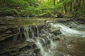 Columbia Run Creek at Cuyahoga Valley NP in Ohio - USA