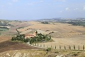 Farm and Cypress on the Hill - Tuscany Italy