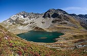 Blueberry in autumn color and lake Jovet - Alpes France