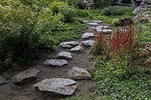 Japanese path in a garden